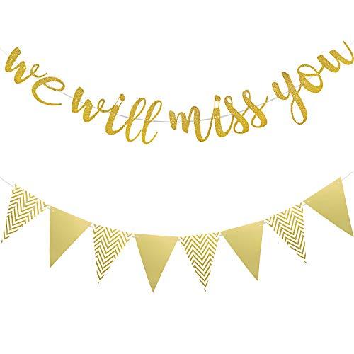 Wir Werden Dich Vermissen Banner Gold Glitzer Banner und Dreieck Flagge Banner für Ruhestand Abschied Weggehen Büro Arbeit Party