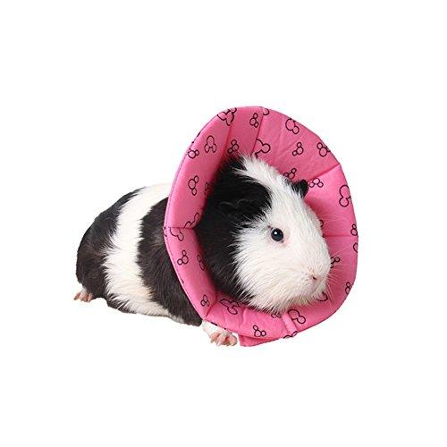iBaste Hundehalsbänder Halskrausen Kegel Gepolstert Hunde Halsband Schutzkragen für Welpen Kätzchen Meerschweinchen,Chinchillas, Igel, Hasen