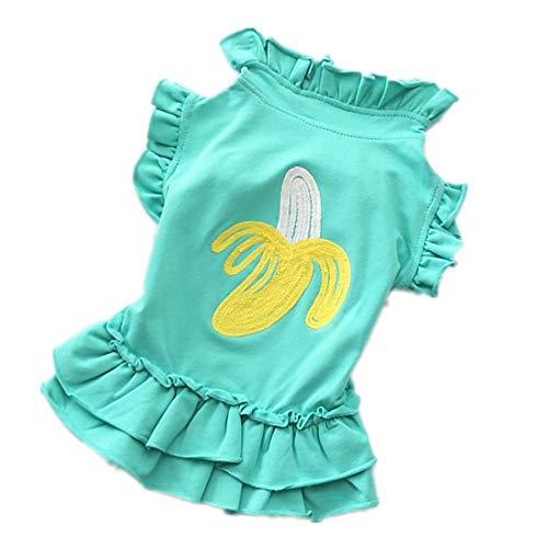 PZSSXDZW Cosplay - Party 2019 Frühling und Sommer Mode Prinzessin Kleid Haustierkleidung,Grün,XL (Supplies Prinzessin Der Frosch-party Und)