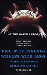 At the Water's Edge: Fish with Fingers, Whales with Legs...