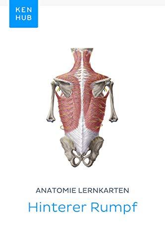Anatomie Lernkarten: Hinterer Rumpf: Lerne alle Knochen, Ligamente ...