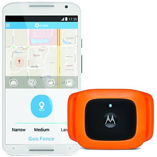 Motorola scout traks - localizzatore gps e tracker attività per cane e gatto - 1 anno di abbonamento incluso, nero