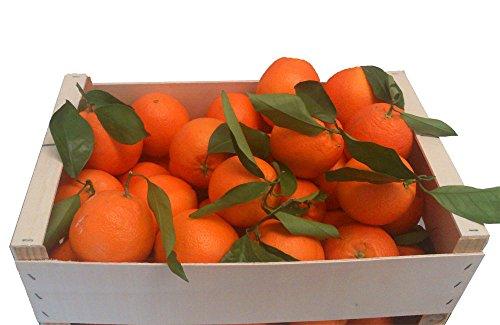 caja-mixta-con-10-kg-de-la-mejor-naranja-de-zumo-y-5-kilos-de-mandarinas-frescas