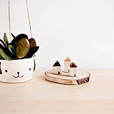 Macetero colgante de cerámica con cara de perro simpatico para techo, paredes.