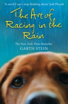 [( The Art of Racing in the Rain By Stein, Garth ( Author ) Paperback Jun - 2009)] Paperback