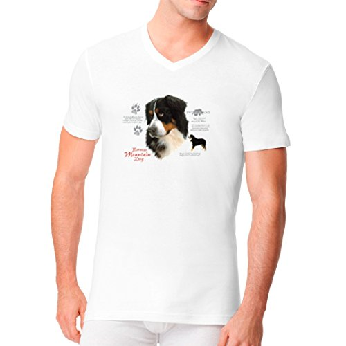 Im-Shirt - T-Shirt Berner Sennenhund Rassetier cooles Fun Men V-Neck - verschiedene Farben Weiß