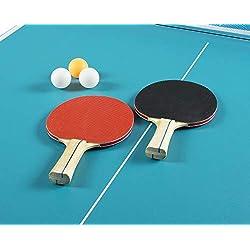 Leomark Table de ping-Pong Pliable Portable Acier Usage intérieur transportable Table de Tennis Sport activités Facile à Ranger Table Ouverte Compact Tennis Bleu