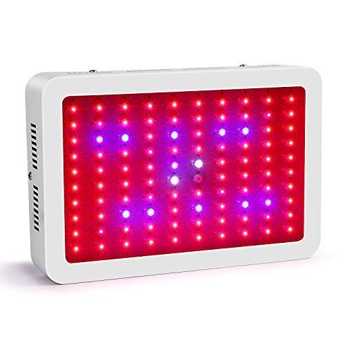 Roleadro Led Grow Light 300W Indoor Led Cultivo para Plantas Crecimiento Floracion Armario Cultivo con IR UV Luz