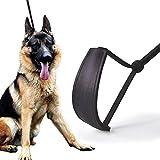 Gulunmun Klassische Hundeleinen Leder Hundeleine P Kette Set Hundehalsband Hundeleine Training skalierbar, L