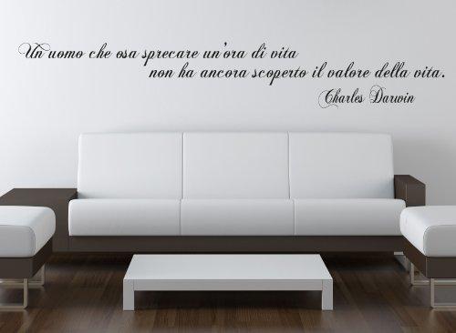 Adesiviamo Charles_Darwin_L Adesivo Murale, Pvc, Nero, 180 x 27 cm