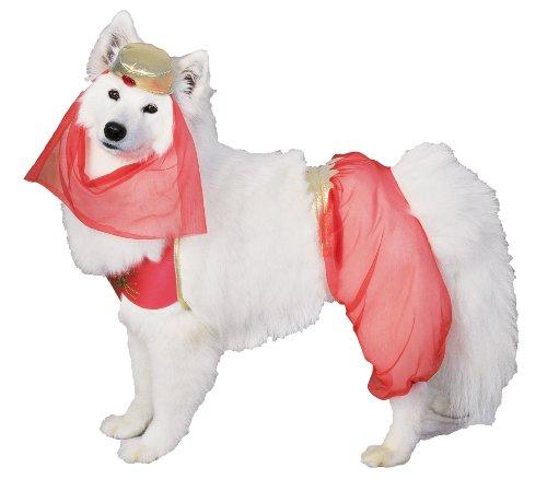 Harem Kostüm Hunde - Rubie's Harem Hund Pet Kostüm-groß-Pet Costumes