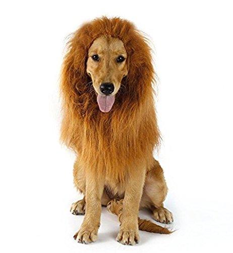 ähne Perücke | Pet Kostüm Lion Mähne Perücke mit Ohren für mittlere und große Hunde - perfekte Hund Geschenk (Lion Halloween-kostüm)