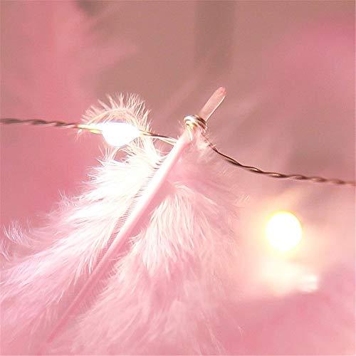 Licht Girlanden Led Feder Vorhang Nachtlicht String Licht Romantische Diy Mädchen Usb Lampe Fairy Home Hochzeit Garten Schlafzimmer Dekor Weiß 3 * 2 Meter (Batterie Fernbedienung) Weiß Rosa Mini Plume