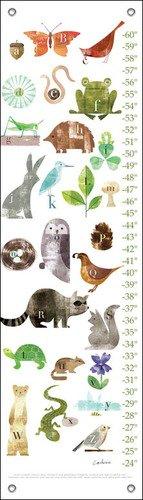 margarita-forest-friends-a-a-la-z-maria-carluccio-crecimiento-diagramas-12-x-42-