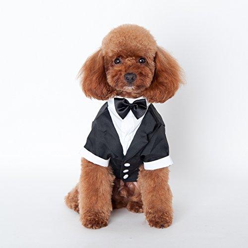 Ericoy Haustier Welpen Hochzeitsanzug mit Fliege Small Dog Gentleman Kostüm