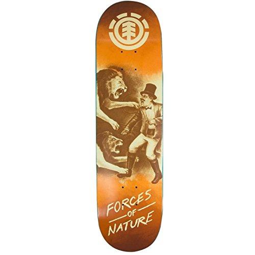element-skate-decks-element-forces-of-nature-lion-825