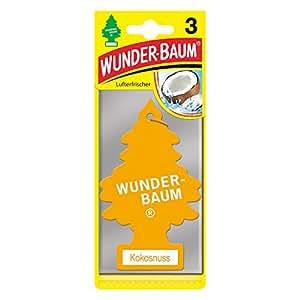 Wunderbaum Kokosnuss, 3-er Pack