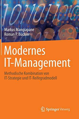 Modernes IT-Management: Methodische Kombination von IT-Strategie und IT-Reifegradmodell (It-security-strategie)