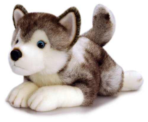 35cm grey/white Husky soft toy;Includes blue leather look collar and Storm name tag;Manufactured by Keel Toys;An ideal gift