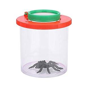 Insect Bug Viewer, Tragbare Insekten-Beobachtungsbox mit Lupe für Kinder im Freien