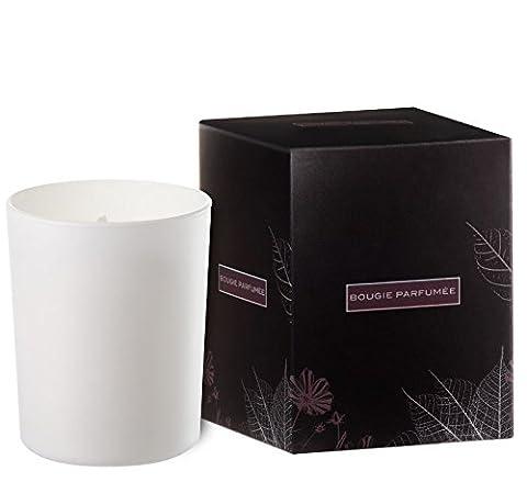 Duftkerze in weißs lackiertem Glas - 45 Brenndauer (Russisch Leder / Cuir Russe)