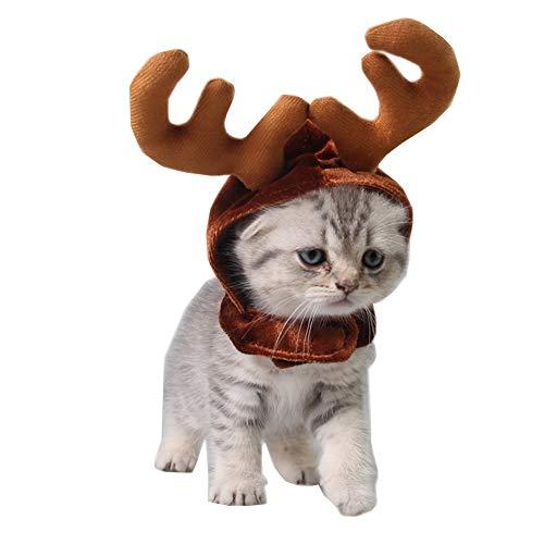 Morbuy Reizende Katzenkostüm Hunde Haustier Hirschmütze Kleidung, Weihnachtsren Stirnband Haustier Kostüme Katze lustiges Hunde Katze Halloween Karneval Cosplay - Dino Dog Kostüm