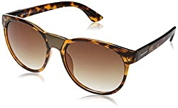 Fastrack UV Protected Round Mens Sunglasses - (P333BR2|55|Gradient Brown Color)