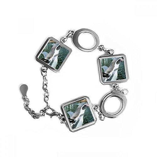 DIYthinker Nature Antarktis Pinguin Wissenschaft Bild quadratische Form Metall Armband Love Gifts Jewelry mit Kette Dekoration