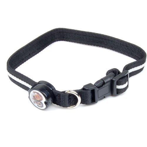 Dcolor Nylon Sicherheits-Halsband mit blauem LED-Blitzlicht fuer Hunde Haustier