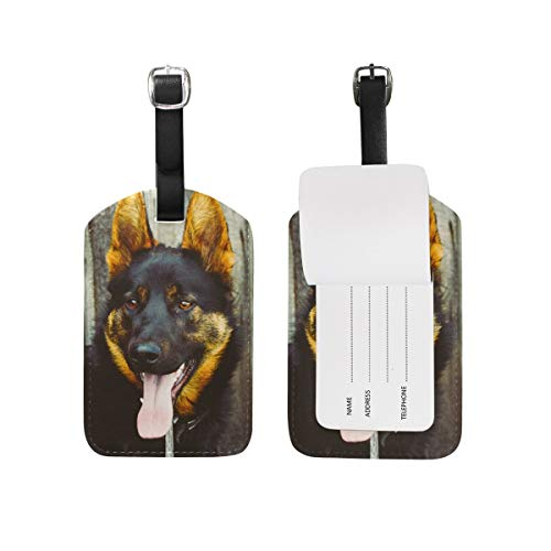 Blue Viper Fence Dog Canine Pet Portrait PU Leather Luggage Tags Personalized 2 Pieces Set