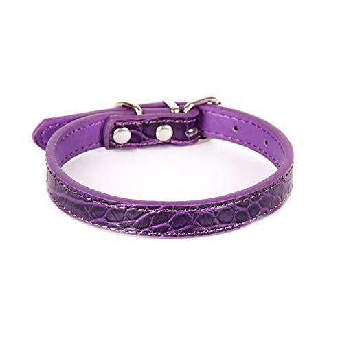 Epinki Hund Halsband aus PU Leder, Krokodil Muster Leder Einfarbig Hundehalsband Wundervolles Design Lederhalsband, Schnalle - Lila M - Lila Krokodil-design