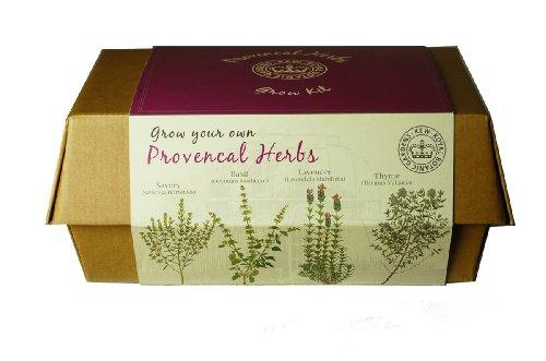 Canova Kew Garden Grow erbe scatola piantare Provenza