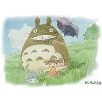 Comparador de precios Ensky My Neighbor Totoro Stroll on Grass Jigsaw Puzzle (300-Piece) by Japan VideoGames - precios baratos