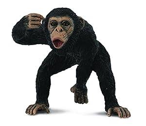 Collecta - Chimpance Macho -M- 88492 (90188492)