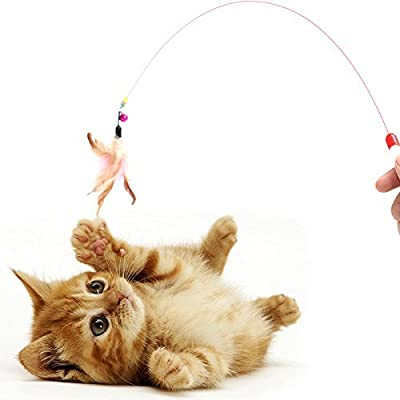 Homewinner Cat Toy Feather Wand 100cm (39.4 inch) length – With Natural Feathers and Colorful small bell are Guaranteed to Drive Your Cat Wild.