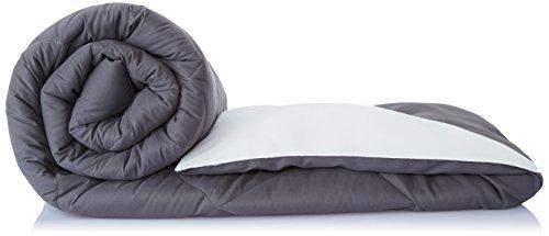 Solimo Microfibre Reversible Comforter, Single (Pale Grey & Steel Grey, 200 GSM)