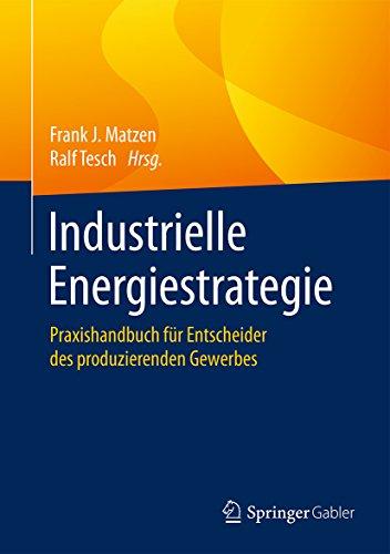 industrielle-energiestrategie-praxishandbuch-fur-entscheider-des-produzierenden-gewerbes-german-edit