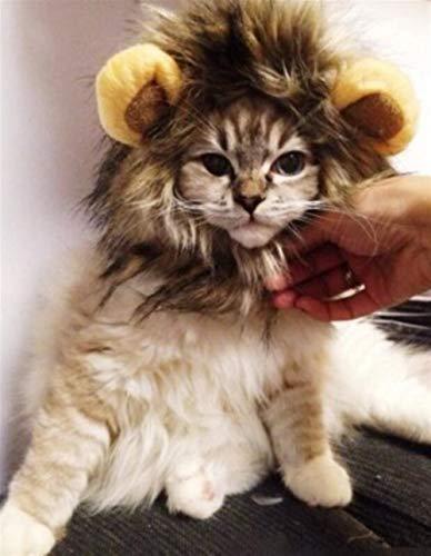 Lion Einfach Kostüm - IU Desert Rose Einfaches Design Haustier-Kostüm Katze Lion Mähne Perücke Halloween Dress up für Pet