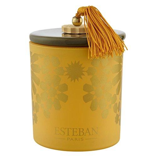 Esteban Ambre Bougie Parfumée Dans Une Boîte 170G - Paquet De 6