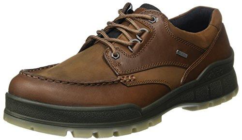 Ecco Track 25, Chaussures Multisport Outdoor Homme Marron (Bison/bison)