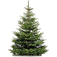MGI DEVELOPPEMENT auténtico árbol de Navidad Natural de Madera b1fc251cb254