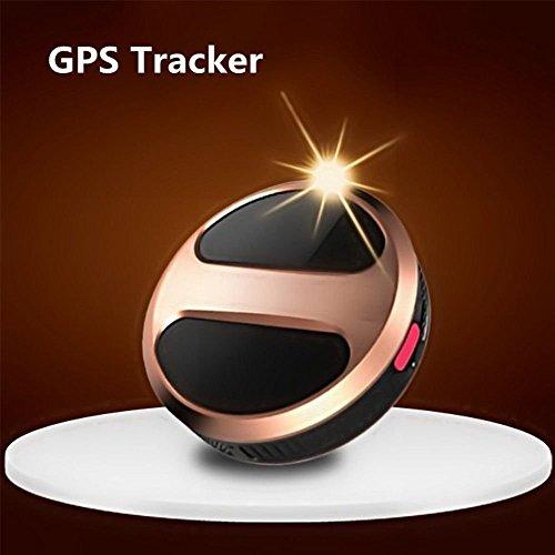 Hund, Tür-elektronik (Mini GPS Echtzeit Tracker Locator GSM/GPRS/GPS für Kind Pet Fahrzeug SOS aus Türen, für kleine Haustiere Hund Katze Global Echtzeit Locator Fernbedienung Stimme Monitor kostenlosen Online-Tracking Plattform)