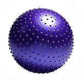 FLYWM,pour Entra?nement Grossesse Equilibre Chair Ballon Gym pour l'exercice Anti-éclatement Anti-dérapant Yoga Swiss Ball,violet-2-73cm