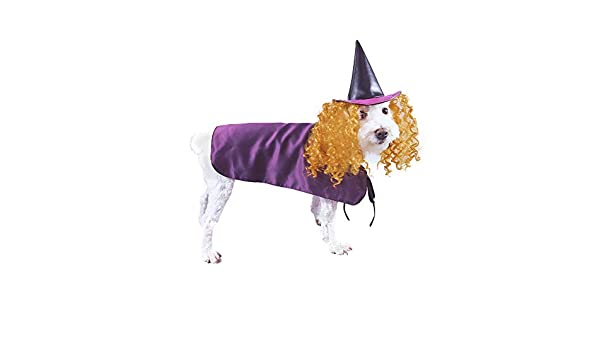 Dog Halloween Dress Up Cute Dog Puppy Costume M Golden Unicorn Horn Pet London Multicolour Unicorn Fancy Dress Up Dog Costume Unicorn Pet Costume with White Body