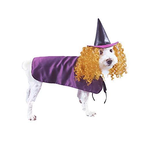 Kitchen-dream Haustier Umhang, Halloween Haustier Kostüm, lustiges Haustier Kostüm Hexe Perücke Hut Kleid für Hunde Katzen und Ostern, Weihnachten