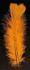 Sachet plumes pied plat orange 15 cm env 25 g - 90/100 plumes env
