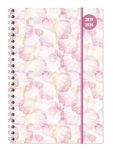 Collegetimer A5 pastel dream ringbuch 2019-2020