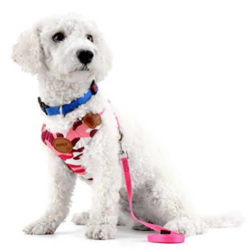 hirr Leine-Set verstellbar Mesh Gepolsterte keine Pull Langlebig klein Puppy Pet Vest Control Harness (100-pfund-hund Halloween-kostüme)