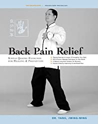 Back Pain Relief: Chinese Qigong for Healing and Prevention by Yang Jwing-Ming (2004-08-16)