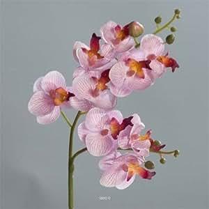 Artificielles - Orchidee mini phalaenopsis artificiel h 53 cm petit fleuron rose-crème - couleur: rose-crème